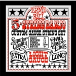 3202 Ernie Ball 2312 Light Banjo Strings, .009 - .020